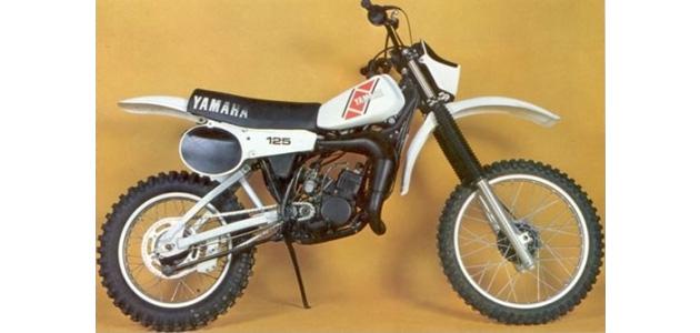 Saison 1981  125cc (1/3)